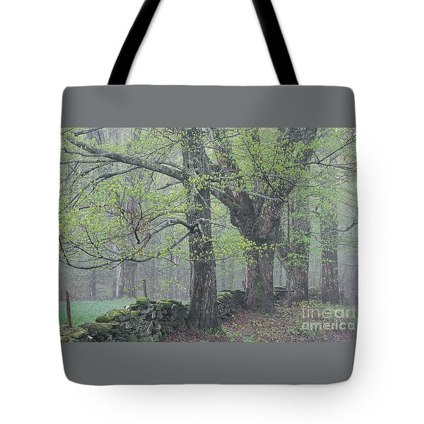 Tote Bag featuring the photograph Spring Mist by Alan L Graham
