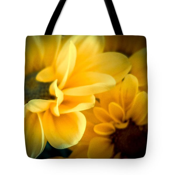 Tote Bag featuring the photograph Spring Mums by Judy Hall-Folde