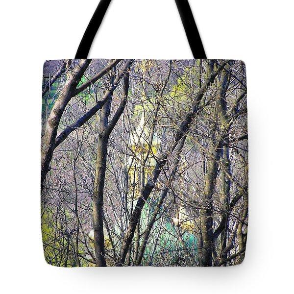 Spring Tote Bag by Oleg Zavarzin