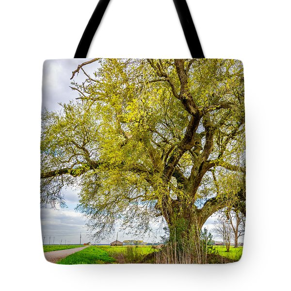 Spring On The Delta 2 Tote Bag by Steve Harrington