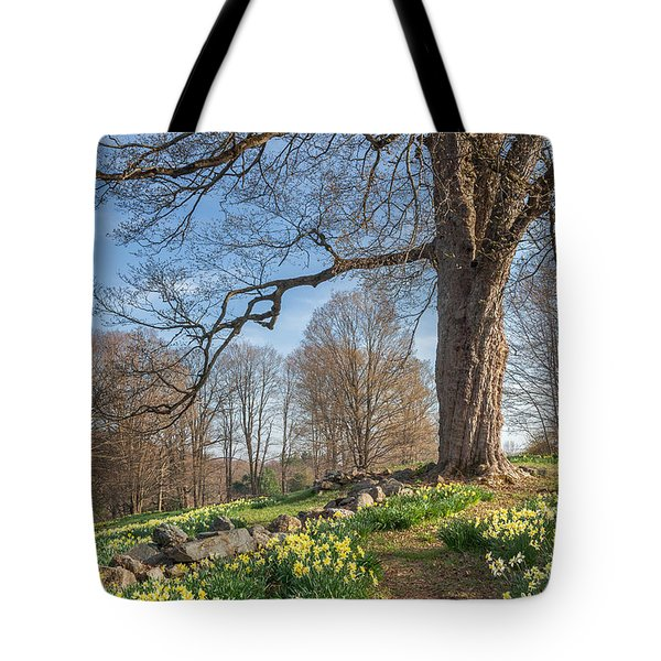 Spring Path Tote Bag by Bill Wakeley