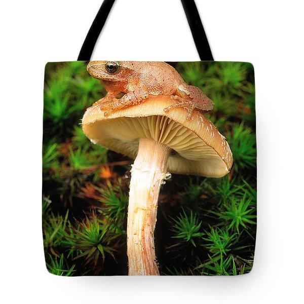 Spring Peeper On Mushroom Tote Bag by Gary Meszaros