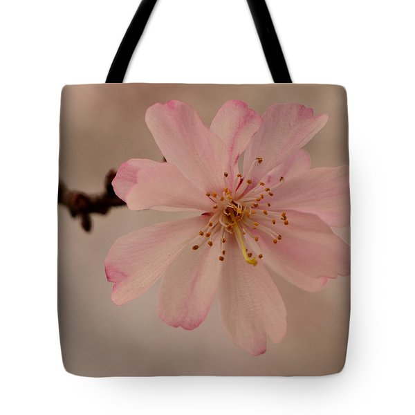 Spring Pink Tote Bag by Larry Bishop