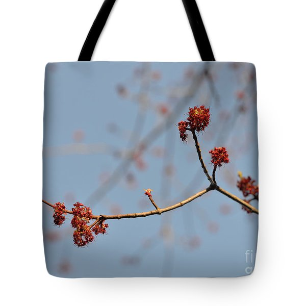 Spring Promise Tote Bag by Jola Martysz