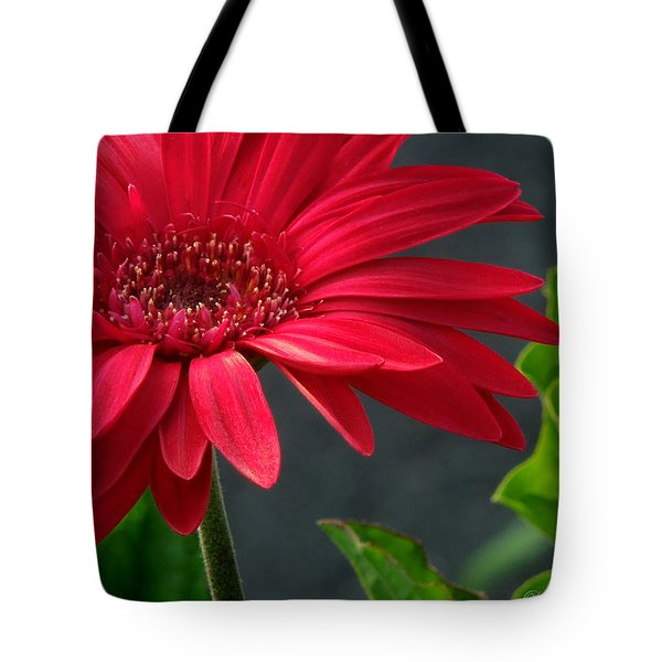 Spring Red Tote Bag by Pete Trenholm