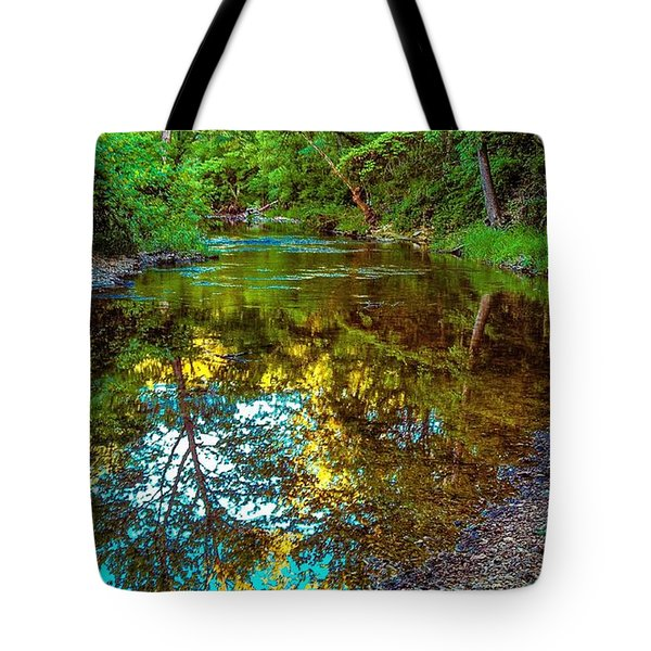 Spring Reflection  Tote Bag by Peggy Franz