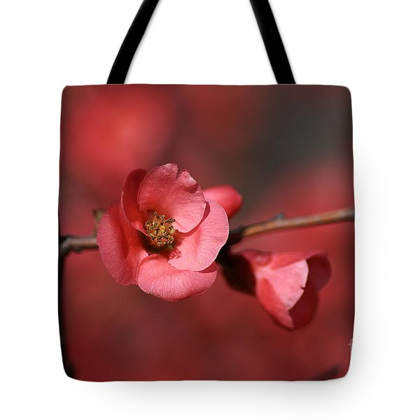 Spring Richness - Flowering Quince Tote Bag by Joy Watson