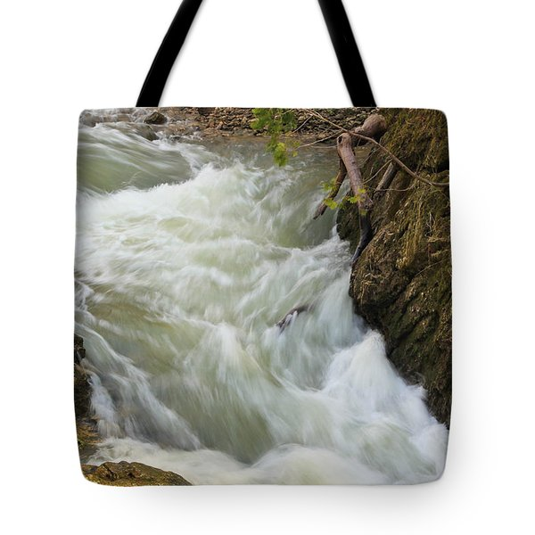 Tote Bag featuring the photograph Spring Rush by Julie Andel
