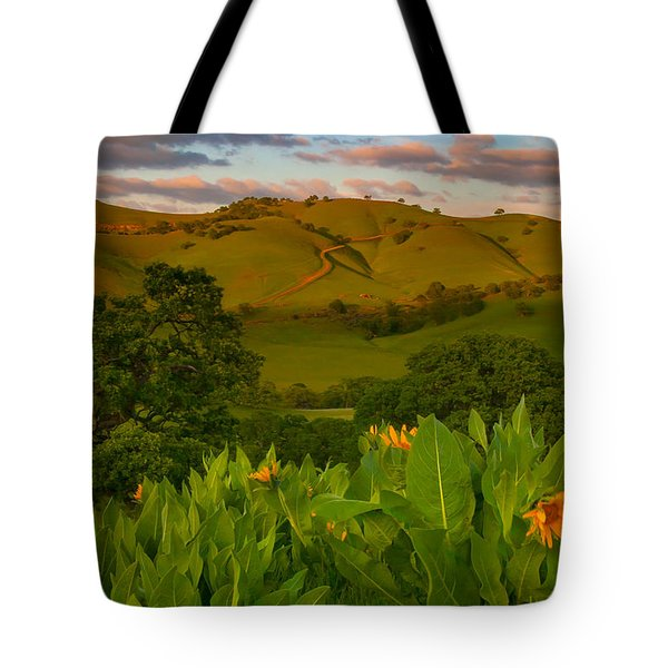 Spring Scene At Round Valley Tote Bag by Marc Crumpler