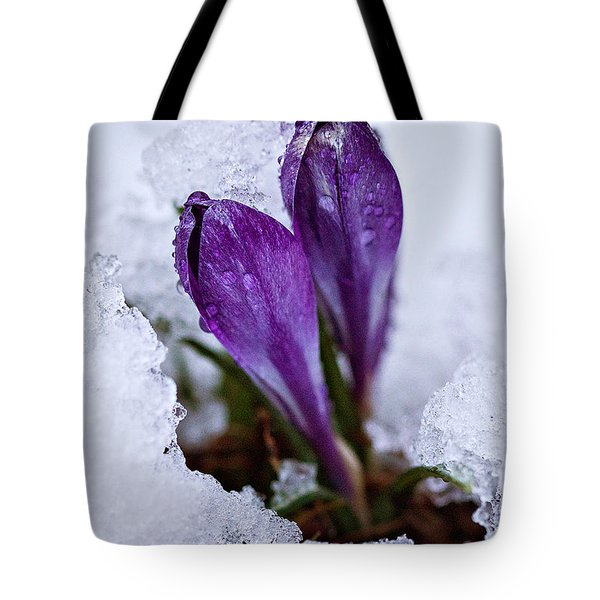 Spring Snow Tote Bag by Joan Davis