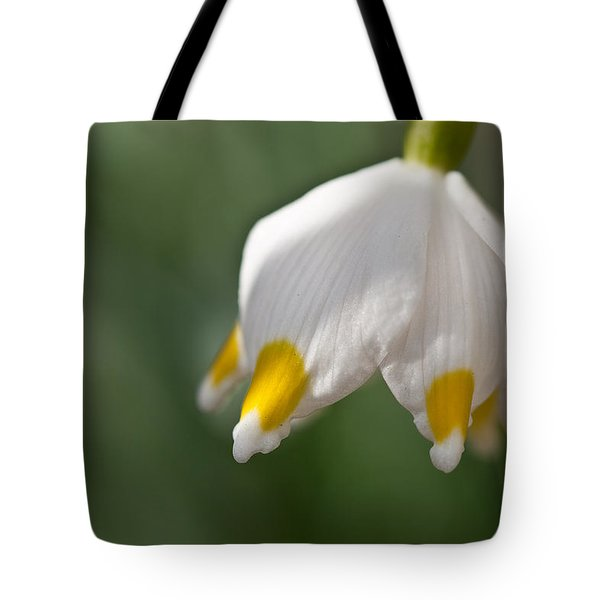 Spring Snowflake Tote Bag by Andreas Levi