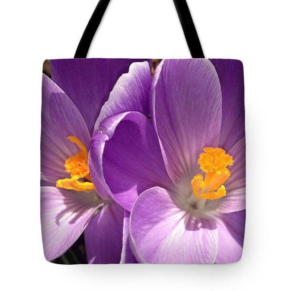 Spring Sprang Tote Bag by Gwyn Newcombe