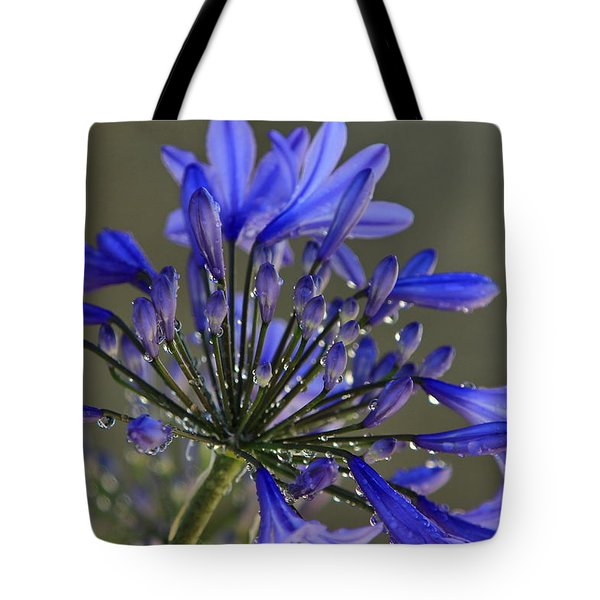 Spring Time Blues Tote Bag