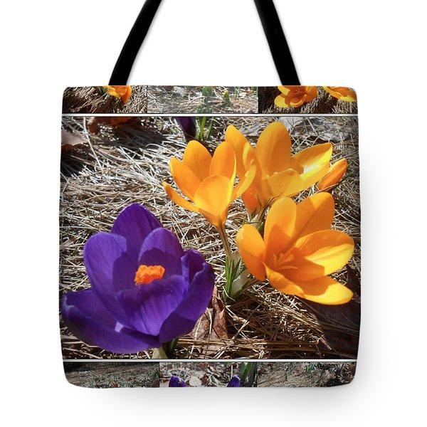 Spring Time Crocuses Tote Bag