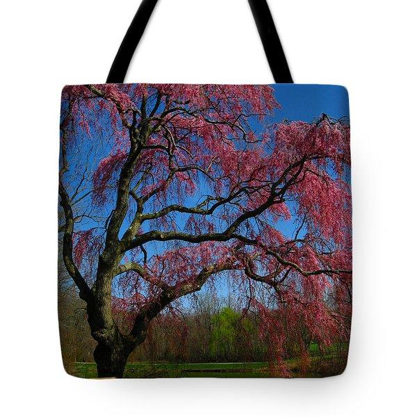 Spring Time Tote Bag by Raymond Salani III