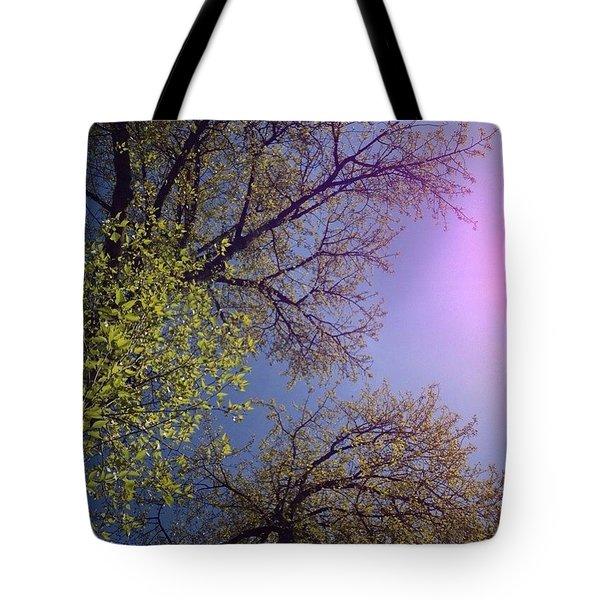 Spring Trees Tote Bag