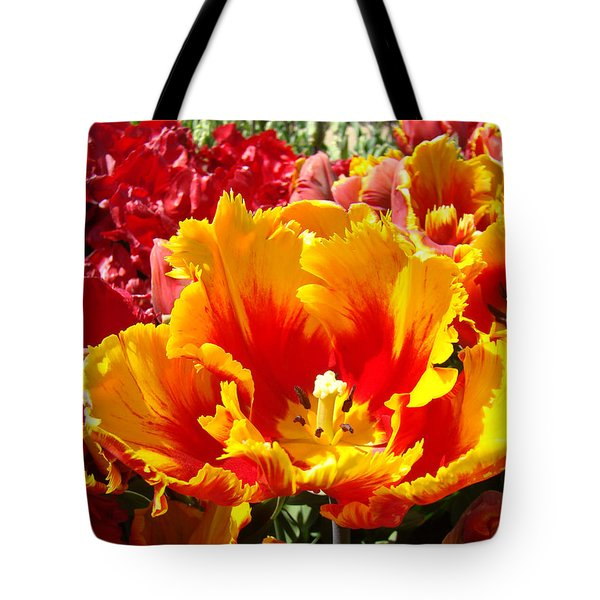 Spring Tulip Flowers Art Prints Yellow Red Tulip Tote Bag by Baslee Troutman