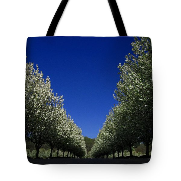 Spring Tunnel Tote Bag
