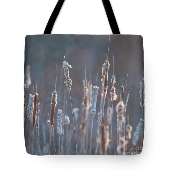 Spring Whisper... Tote Bag by Nina Stavlund