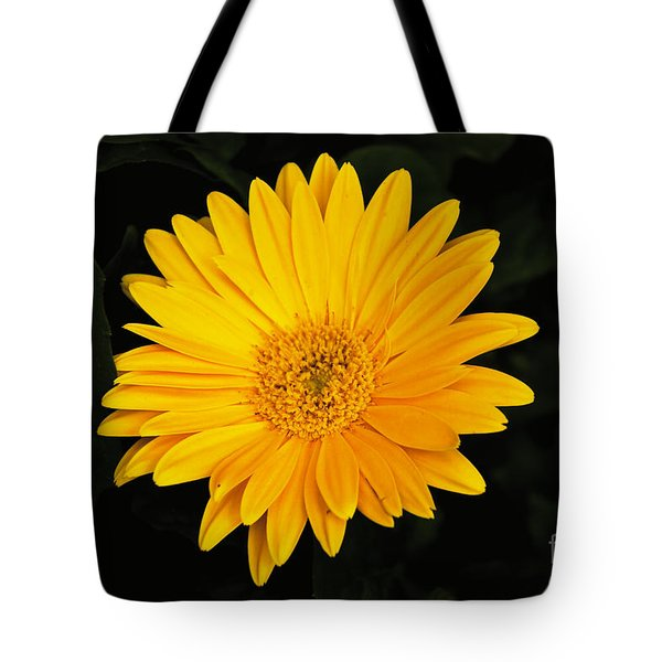 Tote Bag featuring the photograph Spring by William Norton