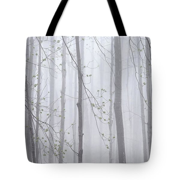 Tote Bag featuring the photograph Spring Woodland Fog 1 by Alan L Graham
