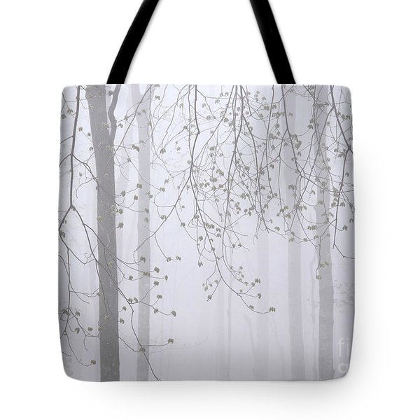 Tote Bag featuring the photograph Spring Woodland Fog 2 by Alan L Graham