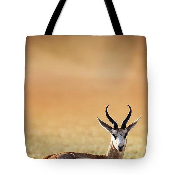 Springbok Resting On Green Desert Grass Tote Bag
