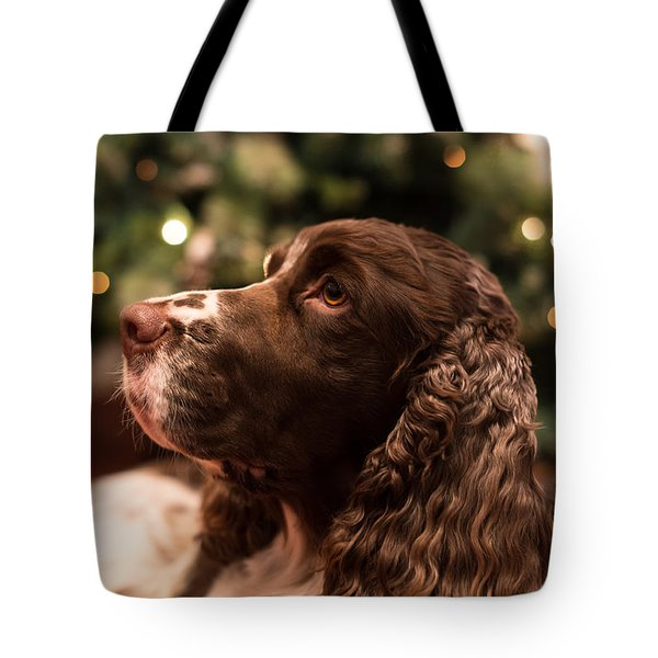 Springer Spaniel Tote Bag by Matt Malloy