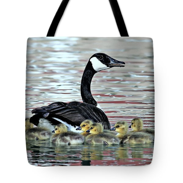 Spring's First Goslings Tote Bag by Elizabeth Winter