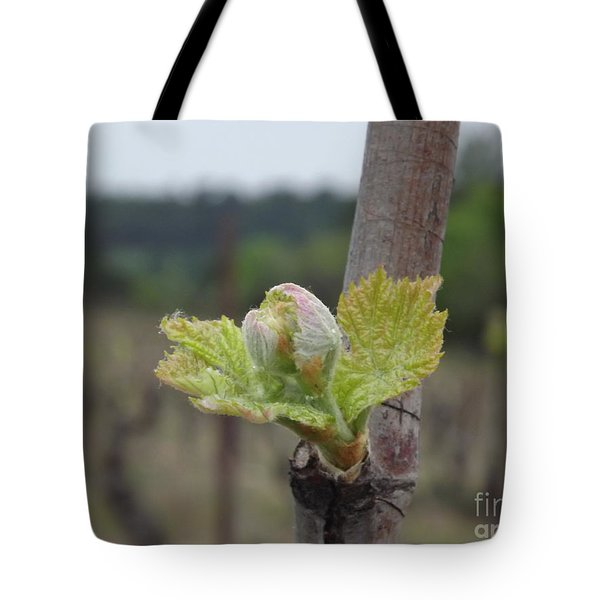 Spring In The Vineyard Tote Bag by France  Art