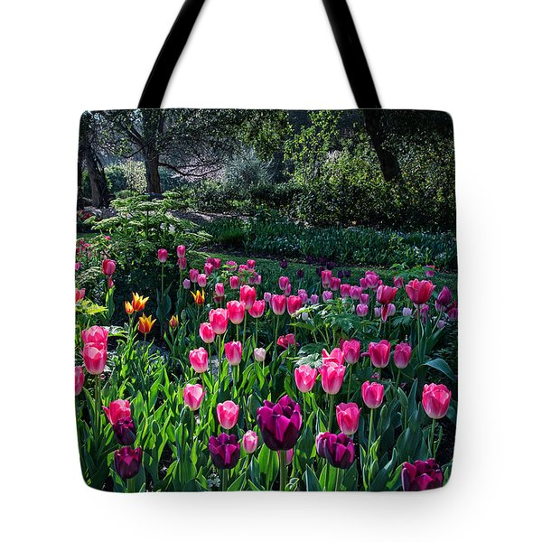 The Promise Of Spring Tote Bag by Lynn Bauer