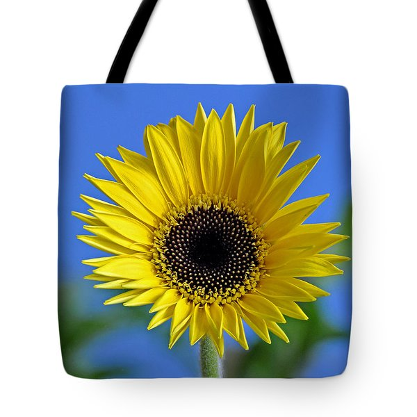Spring's Promise Tote Bag