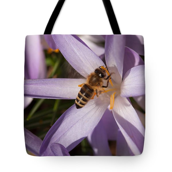 Spring's Welcome Tote Bag