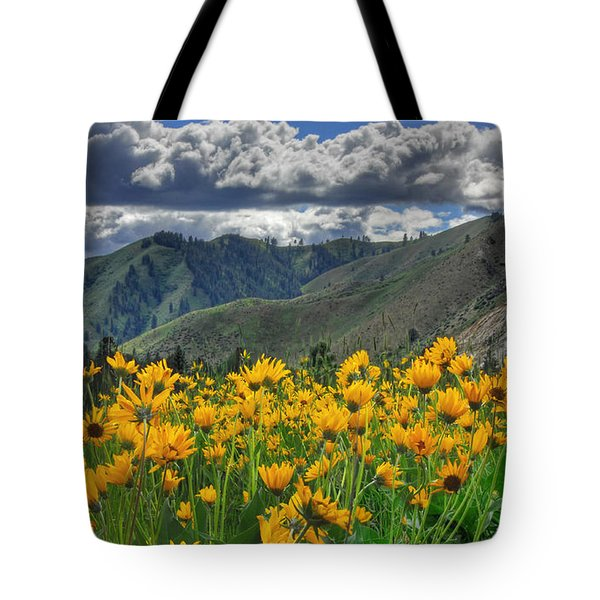 Springtime At Gallagher Tote Bag