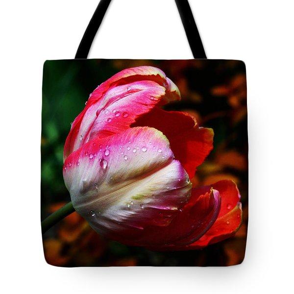 Springtime Tote Bag by Doug Norkum