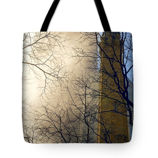 Tote Bag featuring the photograph Springtime In Chicago by Steven Sparks