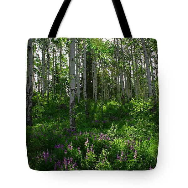 Springtime On The Grand Mesa Tote Bag by Ernie Echols