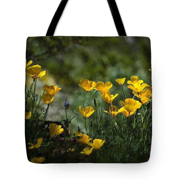 Springtime Poppies  Tote Bag by Saija  Lehtonen