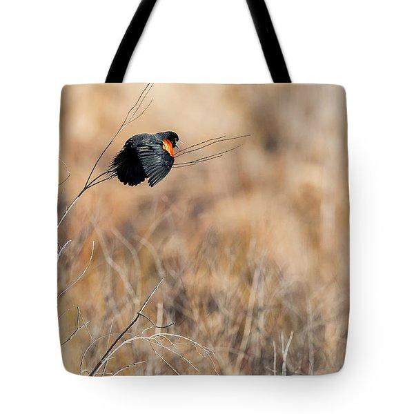 Springtime Song Tote Bag