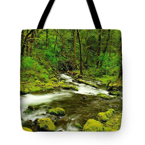 Springtime Splendor Tote Bag