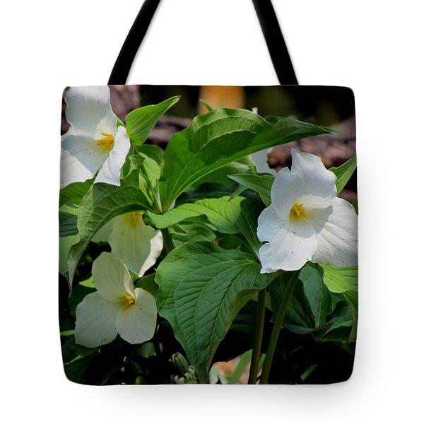Springtime Trillium Tote Bag