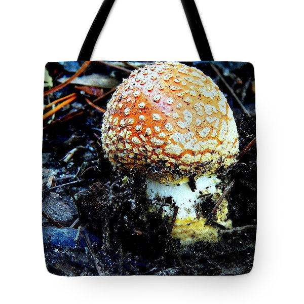 Tote Bag featuring the photograph Sprout by Faith Williams