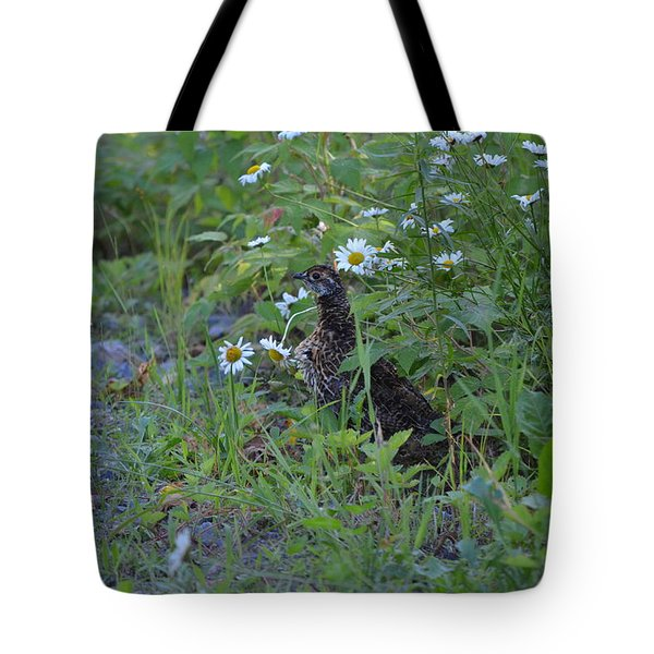 Tote Bag featuring the photograph Spruce Grouse by James Petersen
