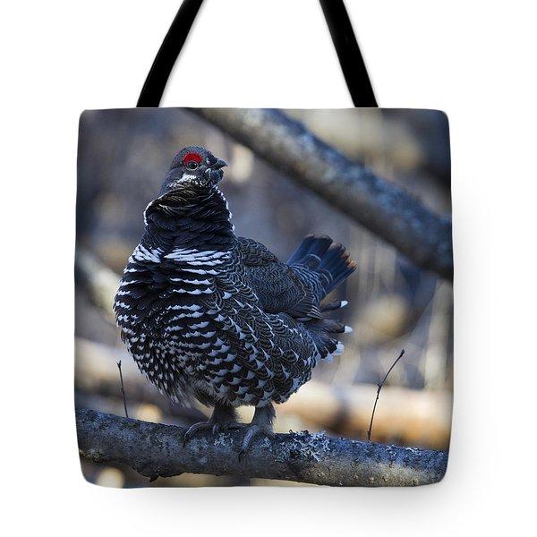 Spruce Hen Tote Bag