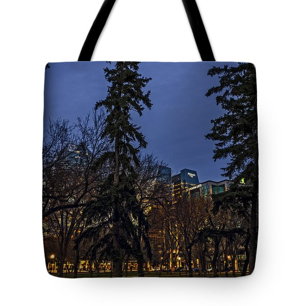 Spruce Tree At The Square Tote Bag