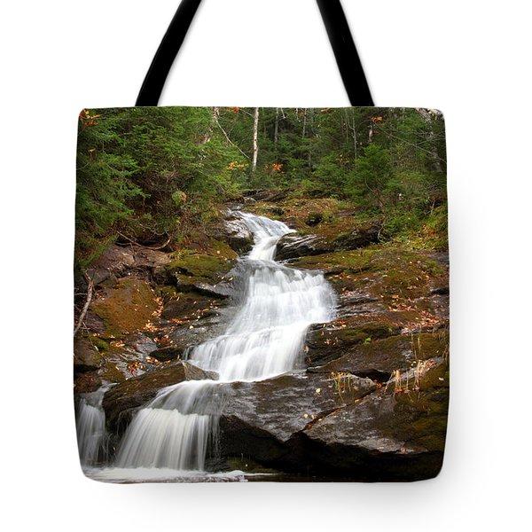 Spur Brook Cascade Tote Bag by Brett Pelletier