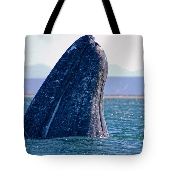 Tote Bag featuring the photograph Spyhopping by Don Schwartz