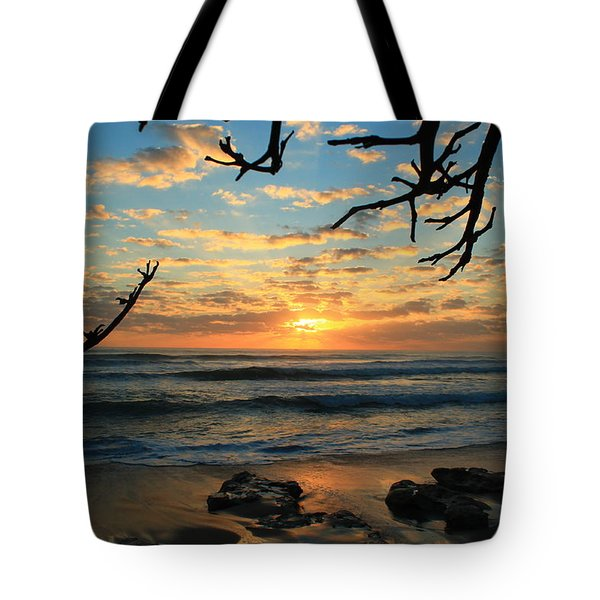Spying At The Sun Tote Bag by Catie Canetti