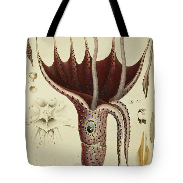 Squid Tote Bag by A Chazal
