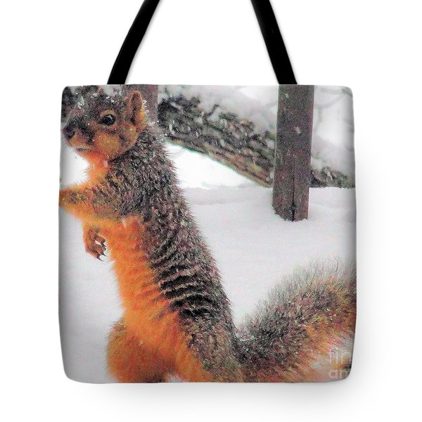 Tote Bag featuring the photograph Squirrel Checking Out Seeds by Janette Boyd
